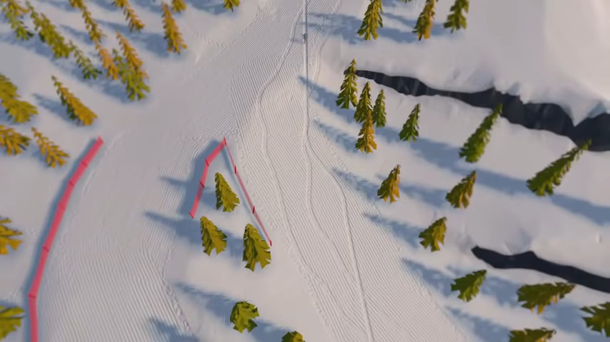 A Skiing Video Game?